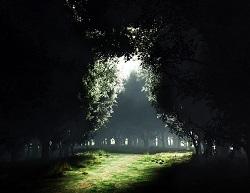 Darkness-to-Light-after-dark-25003762-1600-1200